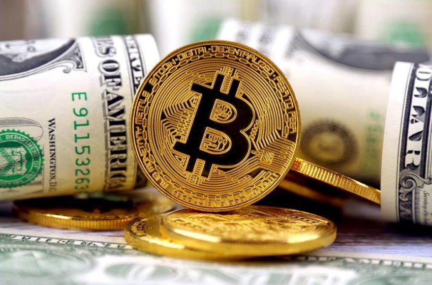 La Token Alliance rédige un rapport à propos des cryptomonnaies
