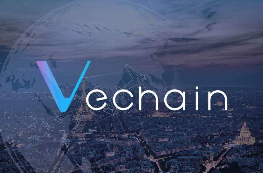 Qu'est-ce que VeChain (VET)? Tout savoir sur cette cryptomonnaie