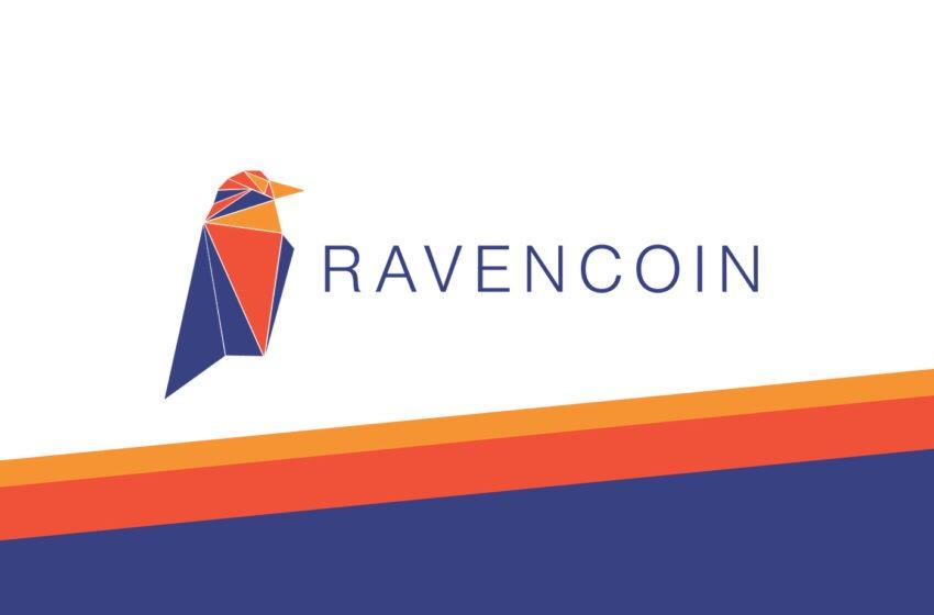 Qu'est-ce que le Ravencoin ? (RVN)