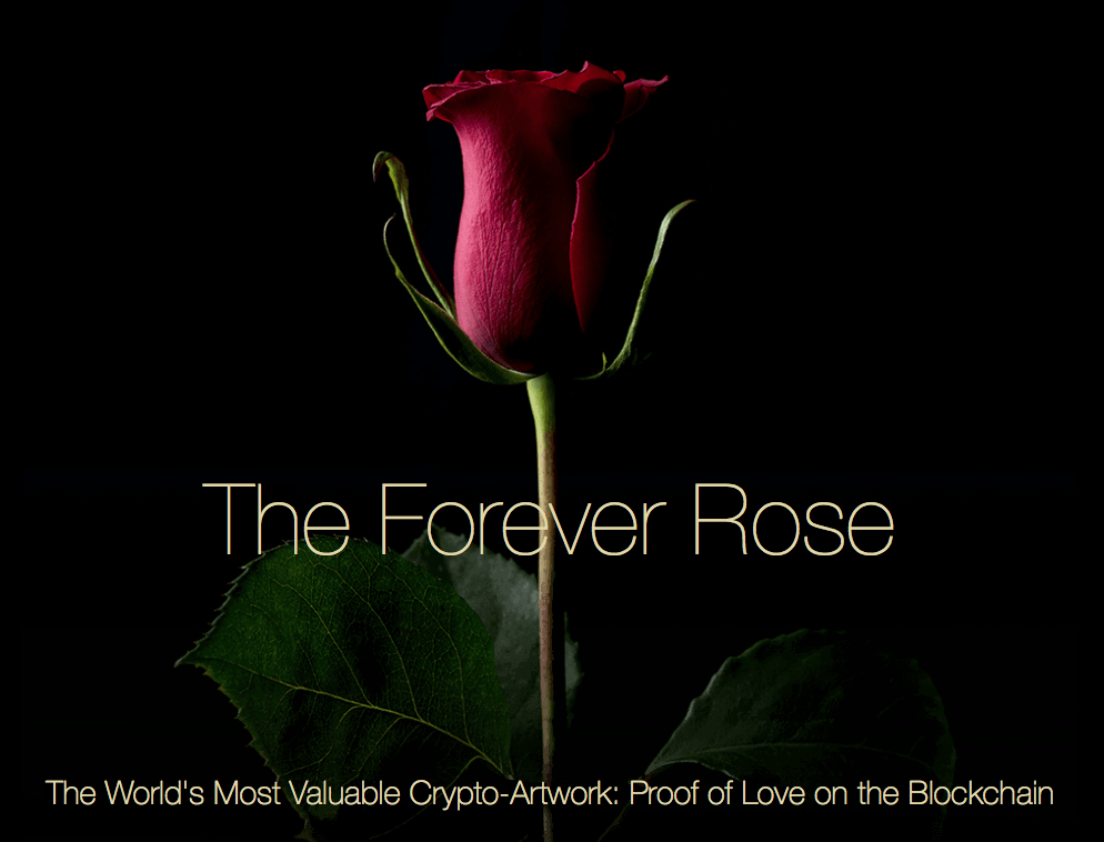 The Forever Rose, Kevin Abosch
