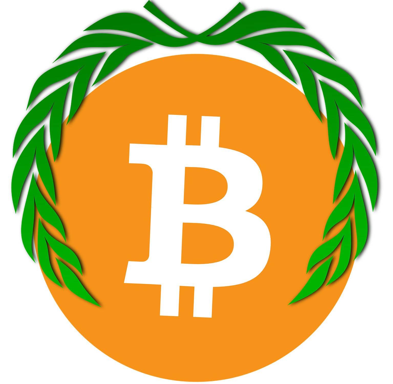 Bitcoin gagnant 2020