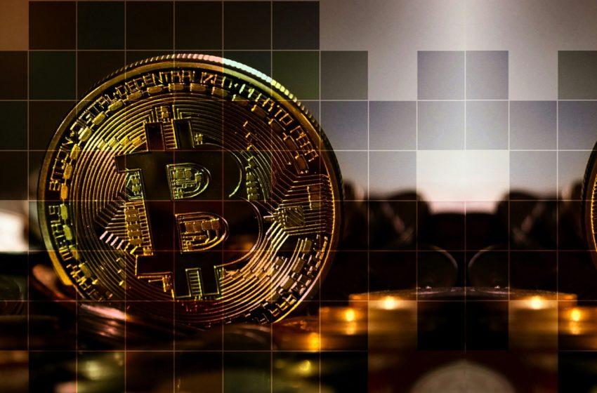 Bitcoin (BTC) – Les institutionnels arrivent juste avant le halving
