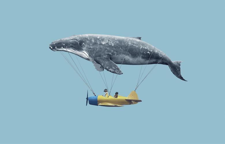 Bitcoin (BTC) – Nouvelles attaques de baleines à signaler