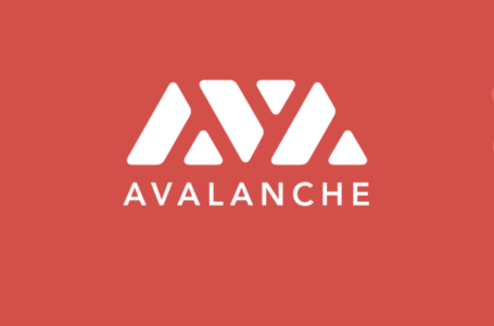 Investir dans le projet Avalanche (AVAX) – Le staking version Ethereum killer