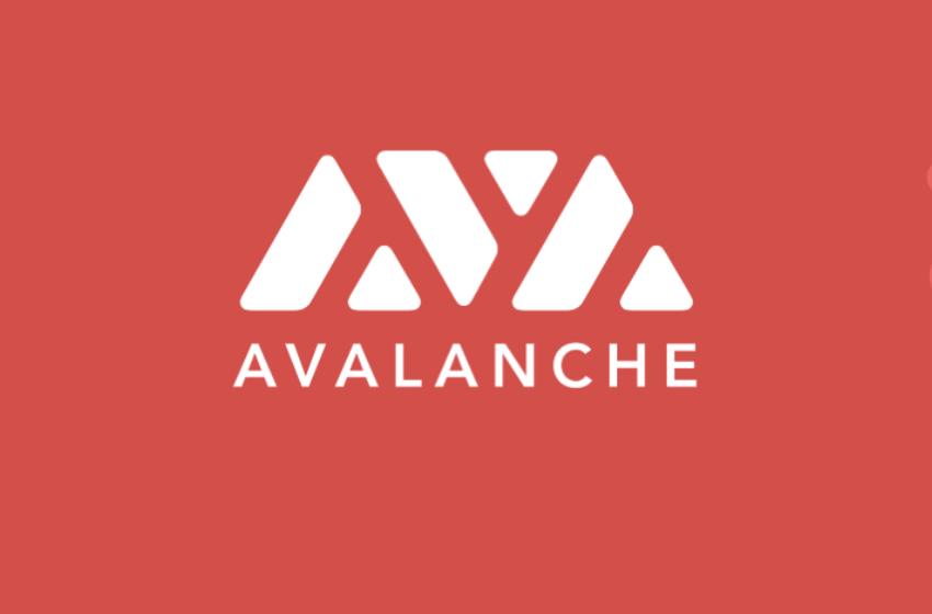 Investir dans le projet Avalanche (AVAX) – Le staking version Ethereum killer