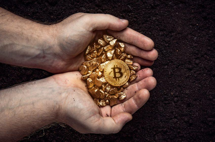 Bitpanda lance une carte de débit Visa pour dépenser  cryptos et or