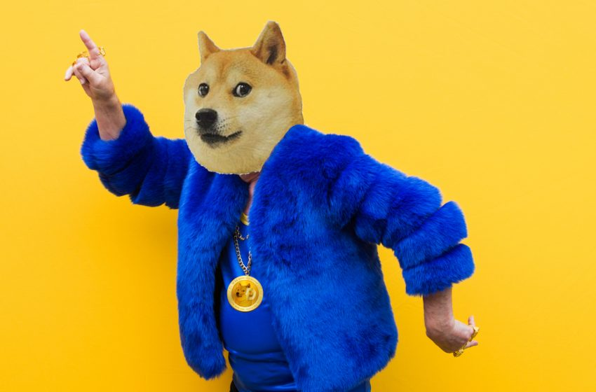 L'affaire Dogecoin (DOGE) – Le fake Bitcoin d'Elon Musk en mode to the moooooon