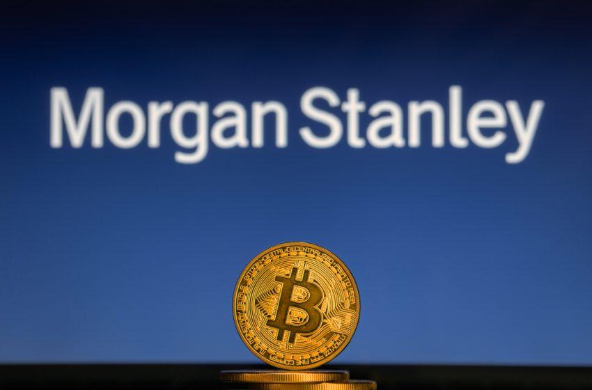 Morgan Stanley aurait des vues sur l'exchange Bithump