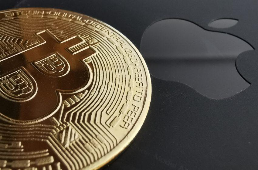 Apple vs Fortnite – Cherche un responsable «paiements alternatifs»