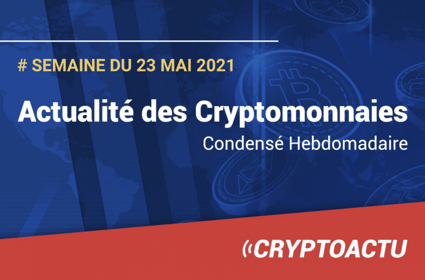 Actualité des cryptomonnaies – Semaine du 23 mai 2021