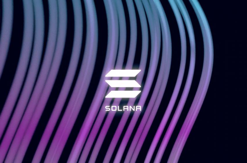 Ecosystème Solana (SOL) – L'émergence de nouveaux projets prometteurs