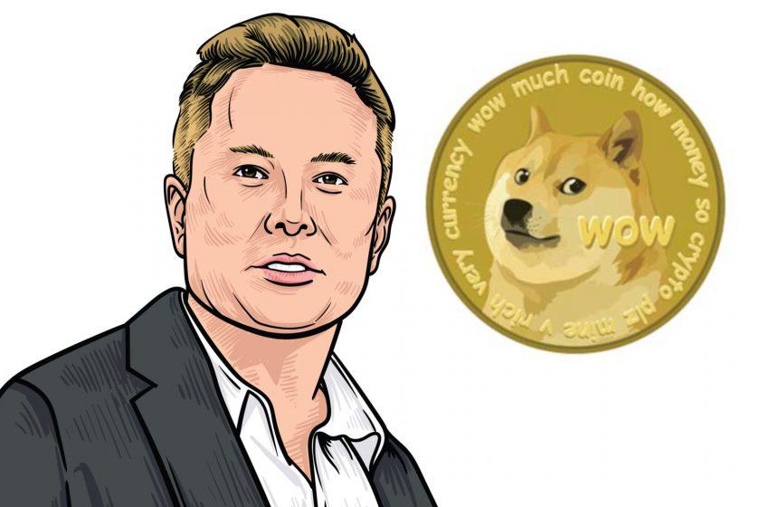 Dogecoin (DOGE) – Ceci n'est pas un article sur Elon Musk et son show télé