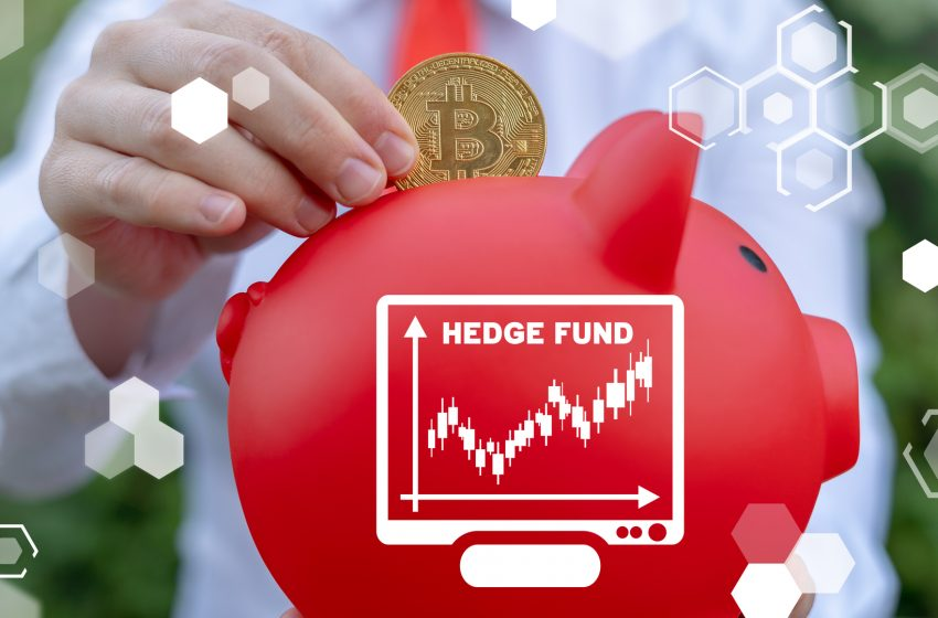 Les fonds spéculatifs crypto ont doublé leur exposition avec un intérêt orienté DeFi