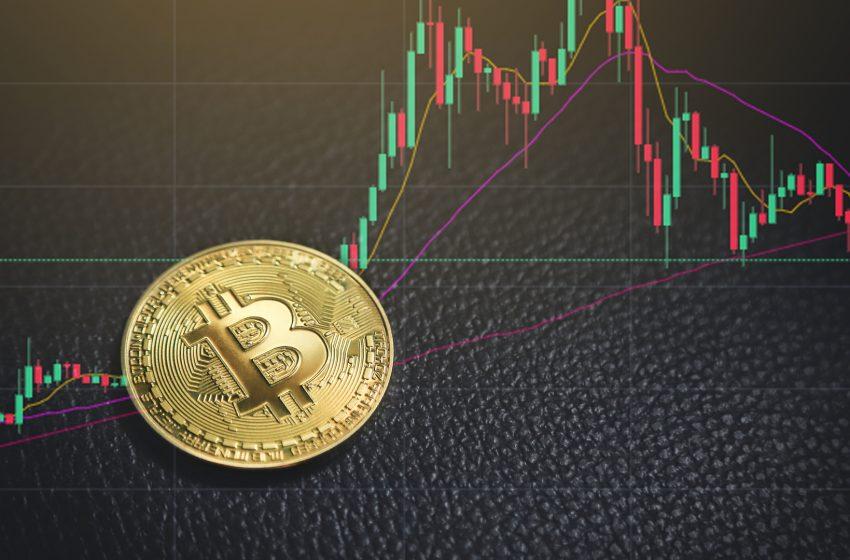 Les entreprises exposées au Bitcoin subissent aussi la chute des prix