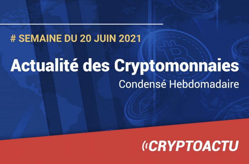Actualité des cryptomonnaies – Semaine du 20 juin 2021