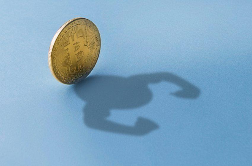 Minage «propre» du Bitcoin – Marathon Digital jette l'éponge et accepte Taproot