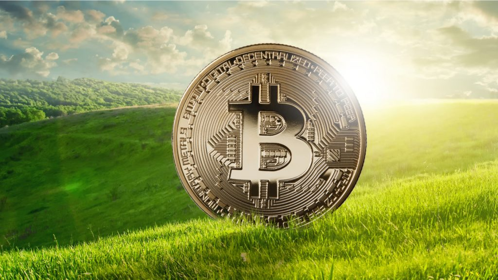 Square et Blockstream Bitcoin vert