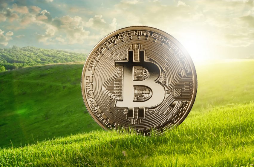 Square et Blockstream s'associent pour construire une infrastructure minière Bitcoin à énergie solaire