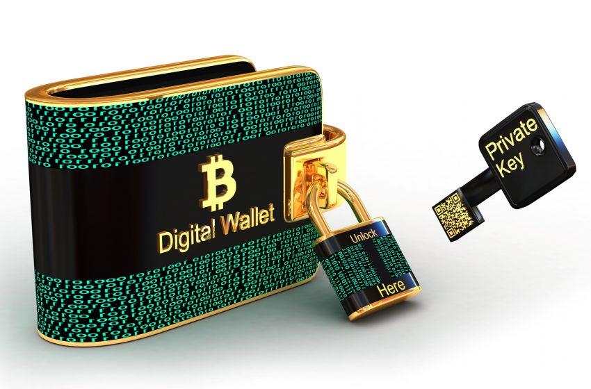 La société de paiement Square envisage la création d'un portefeuille matériel Bitcoin
