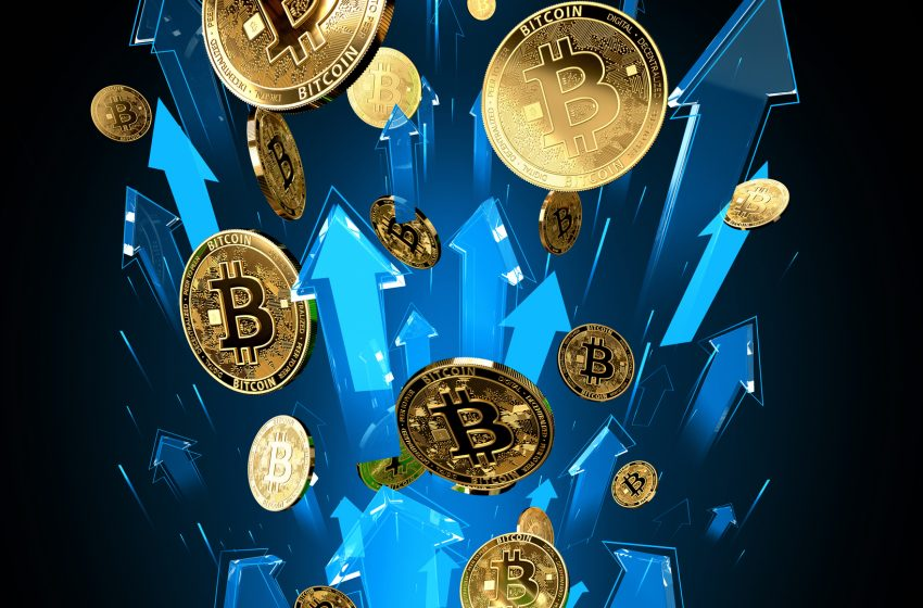 La France au 6ème rang mondial pour les gains enregistrés sur Bitcoin en 2020
