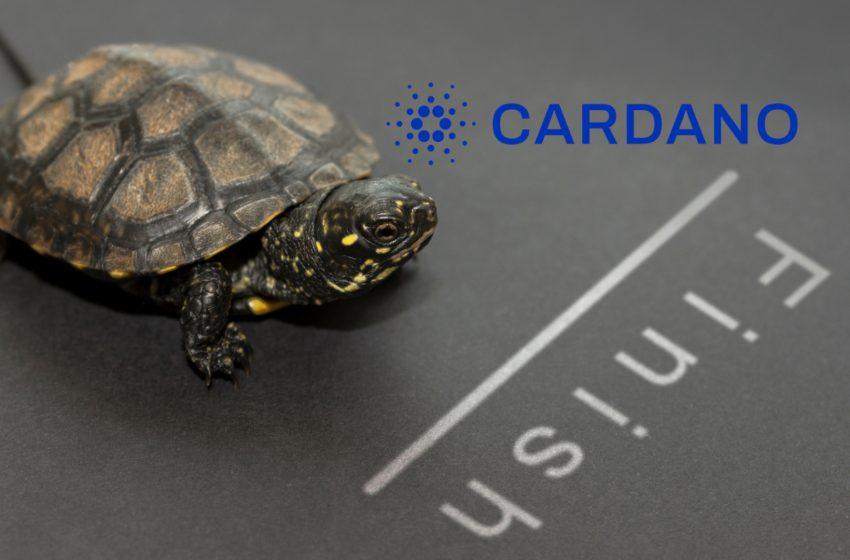 Cardano (ADA) – Arrivée du hard fork Alonzo et premier DEX du nom de Cardax