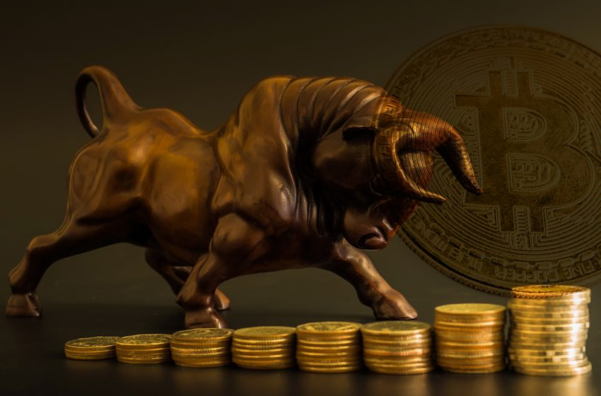 Cours du Bitcoin- Les bulls prêts à faire sauter la banque?
