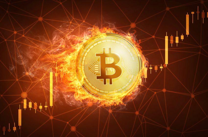 Cours du Bitcoin- Des signaux positifs pour la poursuite du bull run