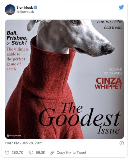 Elon Musk et le Dogecoin (DOGE)