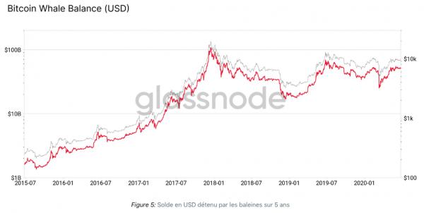 Les baleines Bitcoin sont-elles plus riches ?